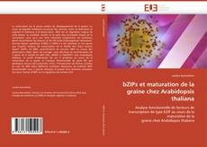 Bookcover of bZIPs et maturation de la graine chez Arabidopsis thaliana