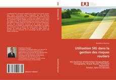Couverture de Utilisation SIG dans la gestion des risques routiers