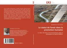 Capa do livro de Le statut de l'avoir dans la promotion humaine