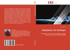 Bookcover of Adaptation de maillages