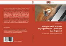 Bookcover of Biologie Moléculaire et Phylogénèse des Lémuriens (Madagascar)