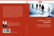 Bookcover of La maîtrise du slack budgétaire