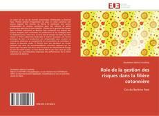 Bookcover of Role de la gestion des risques dans la filière cotonnière