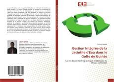 Bookcover of Gestion Intégrée de la Jacinthe d'Eau dans le Golfe de Guinée