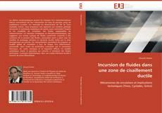 Capa do livro de Incursion de fluides dans une zone de cisaillement ductile