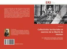 Copertina di Collectivités territoriales et exercice de la liberté de réunion