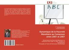 Bookcover of Dynamique de la Pauvreté Monétaire au Cameroun entre 2001 et 2007