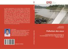 Bookcover of Pollution des eaux