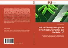 Bookcover of Métabolisme glucidique de Sinorhizobium meliloti par RMN du 13C