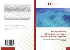 Bookcover of Les Tourbillons Océaniques de méso-échelle du Bassin Algérien