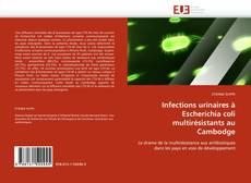 Bookcover of Infections urinaires à Escherichia coli multirésistants au Cambodge