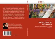 Bookcover of BRÉSIL: TERRE DE MÉTISSAGES