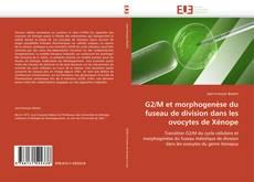 G2/M et morphogenèse du fuseau de division dans les ovocytes de Xénope的封面