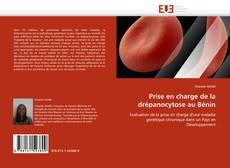 Bookcover of Prise en charge de la drépanocytose au Bénin