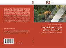 Buchcover von Le patrimoine culturel pygmée en question