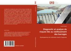 Borítókép a  Diagnostic et analyse de risques liés au vieillissement des barrages - hoz