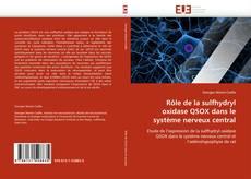 Borítókép a  Rôle de la sulfhydryl oxidase QSOX dans le système nerveux central - hoz