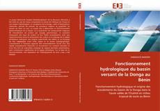 Buchcover von Fonctionnement hydrologique du bassin versant de la Donga au Bénin