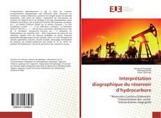 Bookcover of Interprétation diagraphique du réservoir d'hydrocarbure