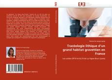 Copertina di Tracéologie lithique d''un grand habitat gravettien en France