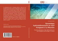Bookcover of Dynamique hydrosédimentaire en récif frangeant à La Réunion