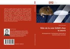 Buchcover von Rôle de la voie SUMO chez la souris