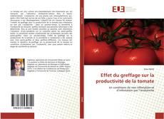 Copertina di Effet du greffage sur la productivité de la tomate