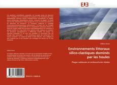 Bookcover of Environnements littoraux silico-clastiques dominés par les houles