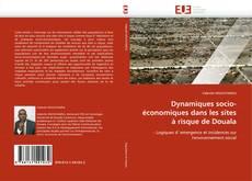 Bookcover of Dynamiques socio-économiques dans les sites à risque de Douala