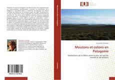Bookcover of Moutons et colons en Patagonie