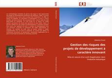 Capa do livro de Gestion des risques des projets de développement à caractère innovant