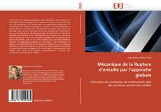 Mécanique de la Rupture d'entaille par l'approche globale kitap kapağı