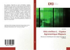 Vitis vinifera L. : Espèce Agronomique Majeure的封面