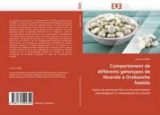 Bookcover of Comportement de différents génotypes de féverole à Orobanche foetida