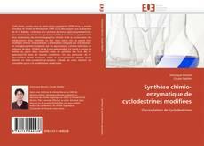 Bookcover of Synthèse chimio-enzymatique de cyclodextrines modifiées