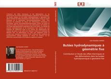 Borítókép a  Butées hydrodynamiques à géométrie fixe - hoz