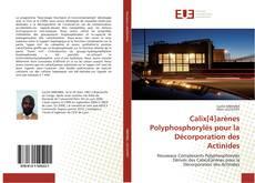 Copertina di Calix[4]arènes Polyphosphorylés pour la Décorporation des Actinides