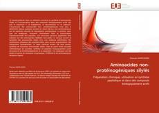 Couverture de Aminoacides non-protéinogéniques silylés