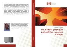 Les modèles graphiques probabilistes en analyse d'images kitap kapağı