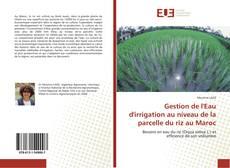 Copertina di Gestion de l'Eau d'irrigation au niveau de la parcelle du riz au Maroc