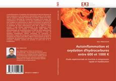Autoinflammation et oxydation d'hydrocarbures entre 600 et 1000 K的封面