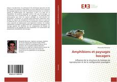 Couverture de Amphibiens et paysages bocagers