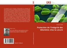 Bookcover of Protection de l'intégrité des télomères chez la Levure