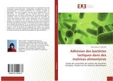 Bookcover of Adhésion des bactéries lactiques dans des matrices alimentaires