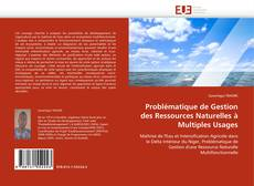 Bookcover of Problématique de Gestion des Ressources Naturelles à Multiples Usages
