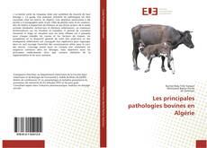 Couverture de Les principales pathologies bovines en Algérie