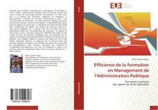 Buchcover von Efficience de la formation en Management de l'Administration Publique