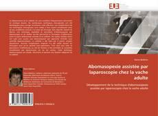 Copertina di Abomasopexie assistée par laparoscopie chez la vache adulte