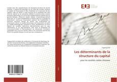 Les déterminants de la structure du capital kitap kapağı