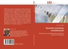 Buchcover von Quantiles Extrêmes Conditionnels